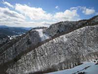 http://asagiri.dyndns.biz/gallery/view_photo.php?set_albumName=album12&id=IMG_0215
