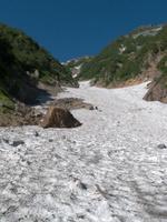 針の木雪渓
